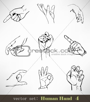 Vector set: Human Hand 4