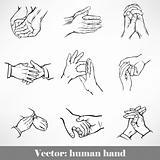 set of hand