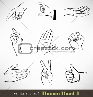 Vector set: Human Hand 1