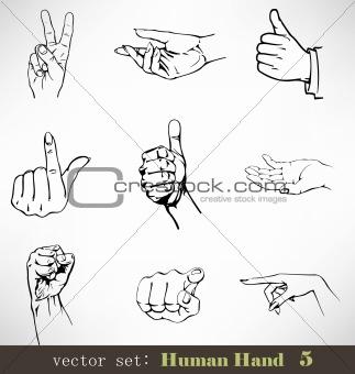 Vector set: Human Hand 5