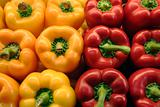 Red and yellow peppers at market