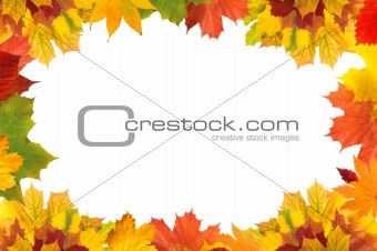 Autumn leaves border for your text