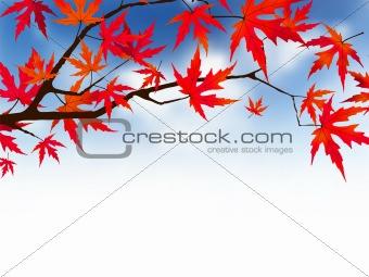 Japanese autumn.
