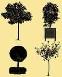 very detailed trees silhouettes