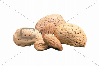 almond salted isolated on white background