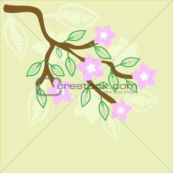 Abstract vector background with oriental cherry flowers branch