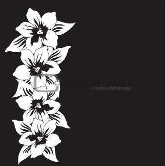 Abstract black and white floral vector background