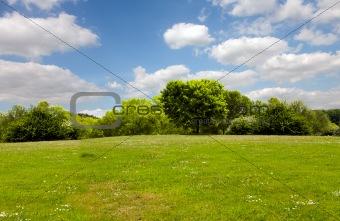 Spring nature, landscape