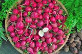 small radish in basket