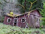 House Fixer-Upper for Sale