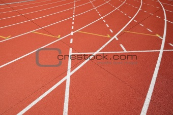 sport field lines