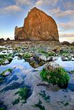 Haystack Rock at Low Tide