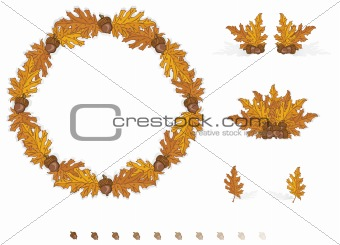 Autumn Design Elements Leaves