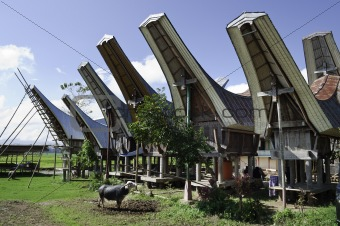 Toraja rural household