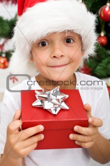 Pure happiness - boy with christmas present