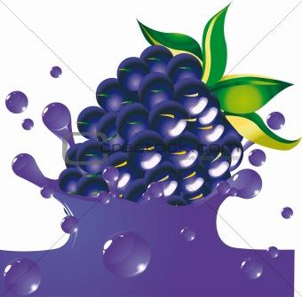 Blackberry falls in juice