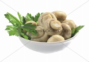 canned mushrooms in the plate isolated on the white