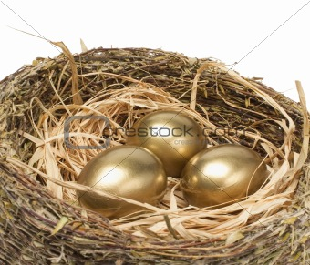 Three golden hen's eggs in bird nest over white