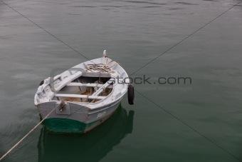 Fishing punt