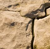 Natural rock background texture