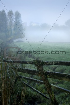 Forest and field scene witth mist and fog with ancient castle