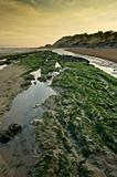 Beuatiful empty beach landscape seascape
