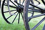 Carriage wheels