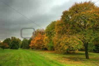 Beautiful Autumn Fall scene with vibrant colors and superb detai