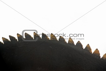 Close up of blade of circular saw