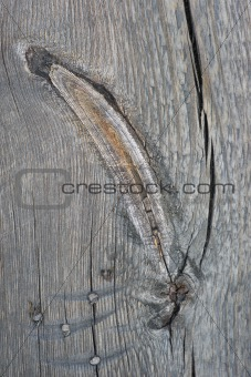 Knotted old wood