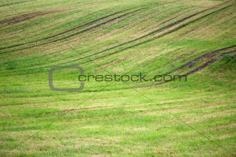 Background of plowed field with grass