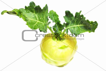green kohlrabi cabbage