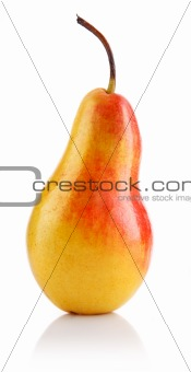 single fresh pear fruits isolated