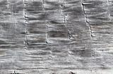Wood Texture from a Log Cabin