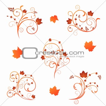 Autumn floral design