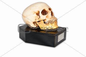 Skull image on casket