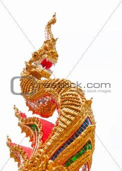 golden naga in Temple of Thailand on white background