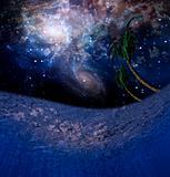 Underwater Night Scene