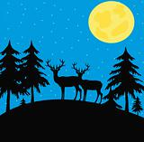 Night wood with wild deer