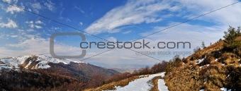 Firs snow on mountain ridge