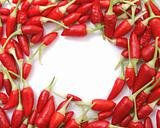 chili frame