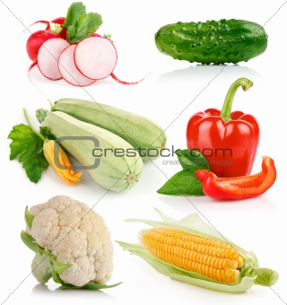 set fresh vegetable with green leaf