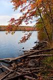 New England Fall Foliage