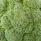 Detail shot of broccoli