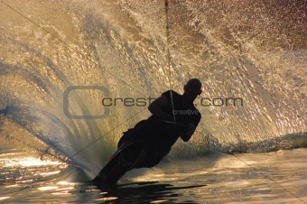 Waterskier Silhouette
