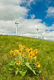 wind turbines with flowers