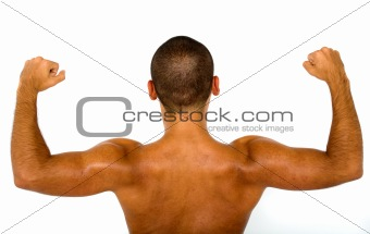 muscular male bare back
