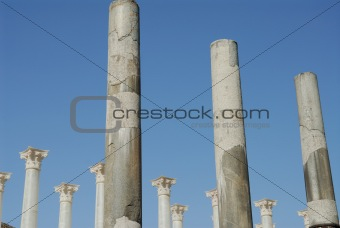 ancient and new columns
