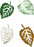4 Grunge Leaves