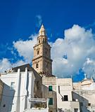 Panoramic view of Monopoli. Apulia.